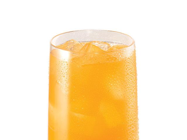 DN九珍果汁饮料